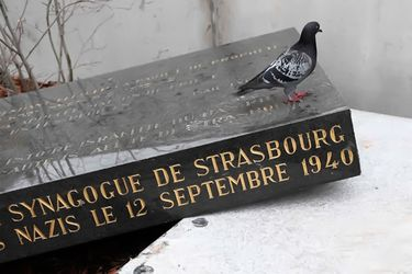 Ataque antisemita | Vandalizan memorial de sinagoga vieja de Estrasburgo