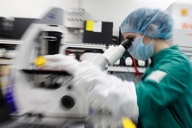 Científicos encuentran 140.000 especies de virus en el intestino humano, la mayoría desconocidos