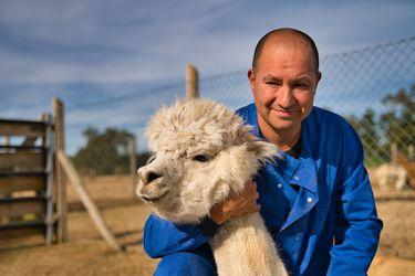 Anticuerpo de alpaca creado por chilenos podría convertirse en fármaco; esto dice la ciencia sobre si hay una vacuna mejor y variante andina alerta a la OMS: tres cosas que aprendimos del coronavirus esta semana