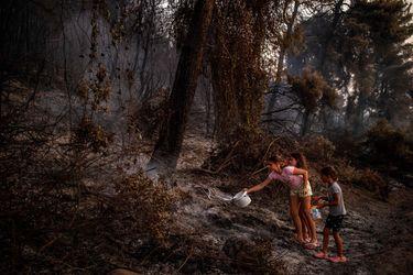 Incendios forestales y récords de temperatura: la ola de calor que sofoca al hemisferio norte