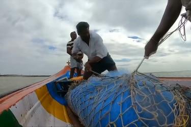 Crean tablas de surf hechas a base de la basura del océano