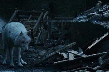 Los fans de Game of Thrones están molestos por como Jon dejó a Ghost
