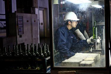 La mitad de los trabajadores de las empresas del IPSA son extranjeros