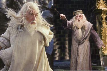 """George R.R. Martin cree que Gandalf """"patearía el trasero"""" de Dumbledore"""