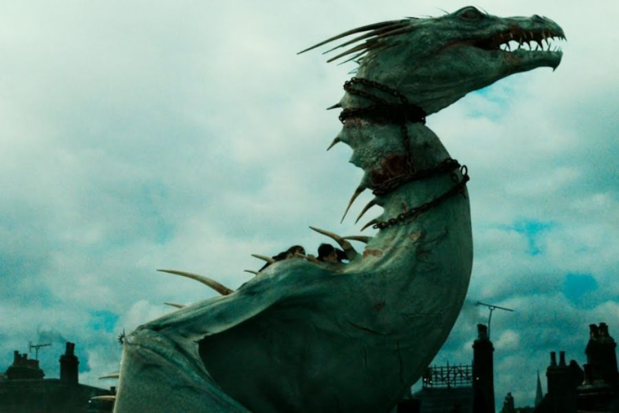 harry dragon
