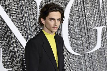 Timothée Chalamet: el diamante de Hollywood
