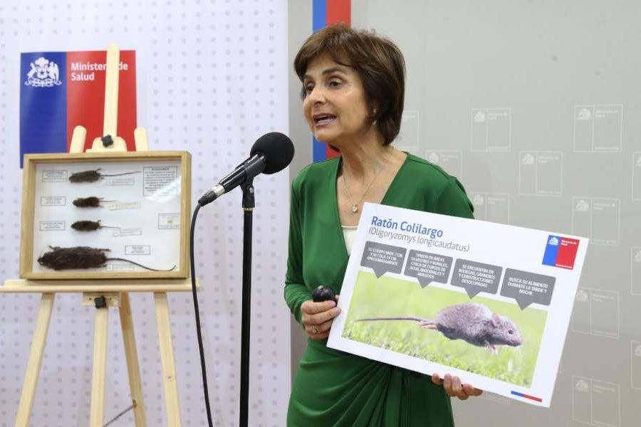 Subsecretaria Paula Daza