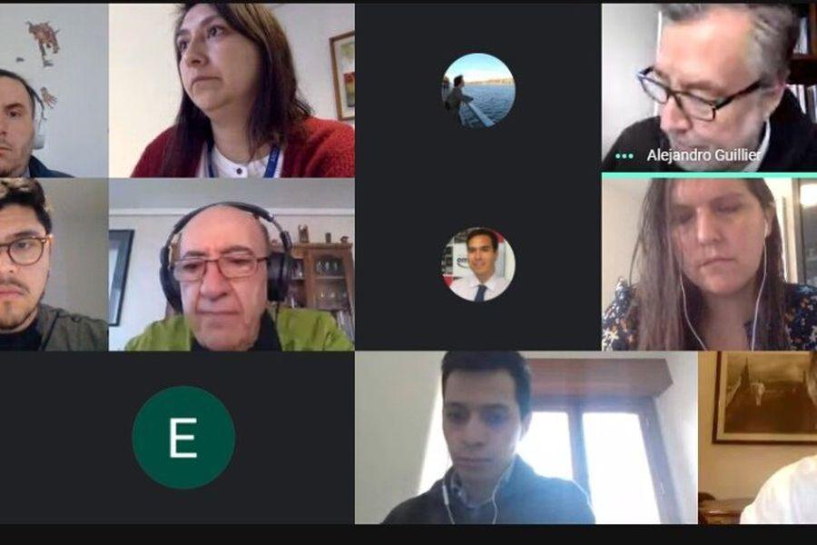 La imagen de la reunión virtual fue difundida a través de las cuentas de Twitter de las agrupaciones de investigadores.