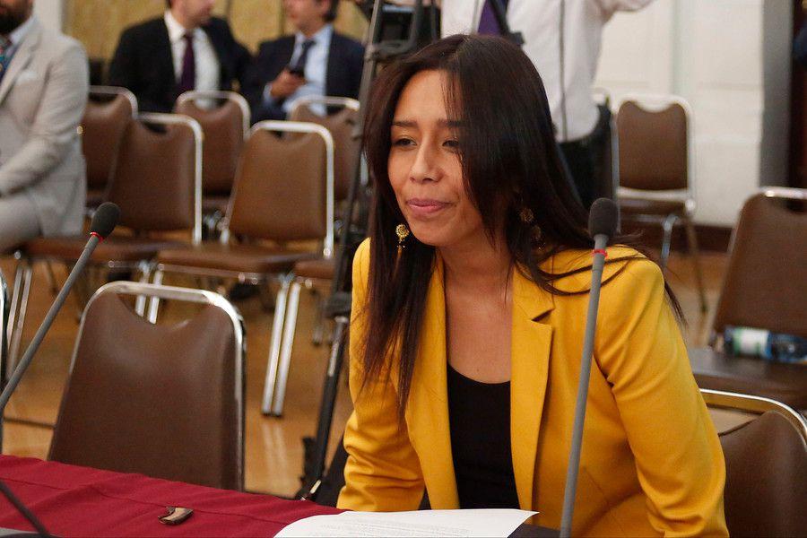 Diputada Aracely Leuquen
