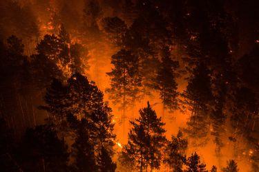 Siberia se derrite: incendios y ola de calor han provocado un dramático deshielo de la zona más fría del planeta