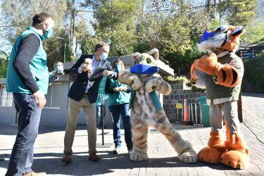 Anuncian reapertura del Zoológico Nacional: Visitantes deberán agendar hora previamente y su aforo será del 35%