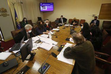 AC contra Presidente Piñera: comisión revisora recibe a ministra Schmidt y exministro Mena de Medio Ambiente, y a funcionarios del SII