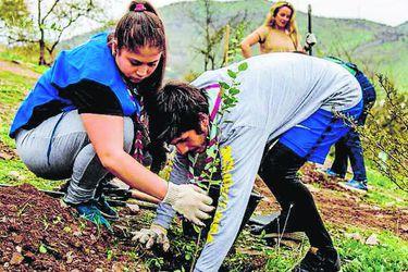 La campaña ambiental chilena que llegará a todo el mundo