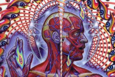 lateralus_tool