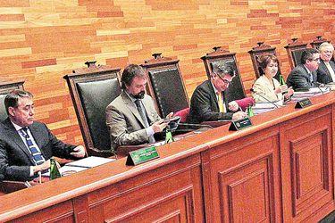 Imagen Pleno Tribunal Constitucional511