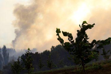Alerta roja en Las Cabras por incendio forestal que ha dejado dos casas quemadas