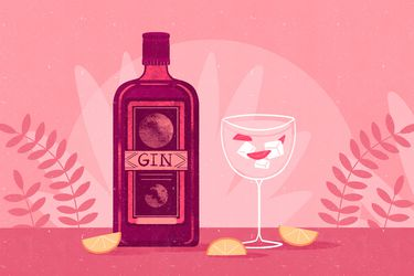 Guía del gin: 8 opciones para distintos gustos y presupuestos