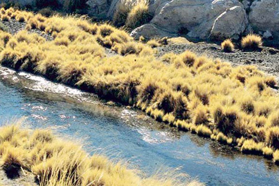 río Loa
