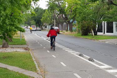 Aumentar las áreas verdes y las ciclovías: Más de 100 candidatos a alcaldes firman un compromiso con el medioambiente