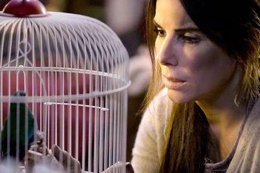 Two Popes y Bird Box son parte de los títulos de Netflix que puedes ver gratis