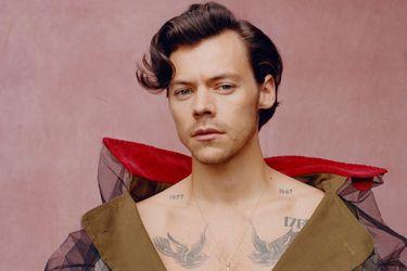 """Harry Styles: """"Es importante eliminar el ego cuando se hace cualquier tipo de arte"""""""