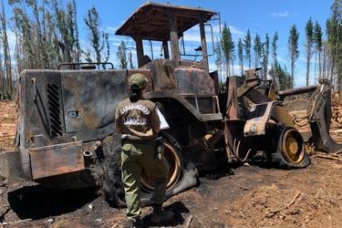 Nuevo ataque incendiario se registra en el sur: Diez maquinarias forestales fueron quemadas en Cañete