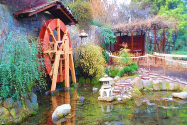 El jardín japonés de Santiago que cuestiona la cultura de sus visitantes