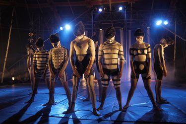 La función debe continuar: los malabares del circo en medio de la pandemia