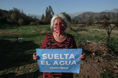 Hoy los avances ambientales son alcanzados gracias a la presión ciudadana