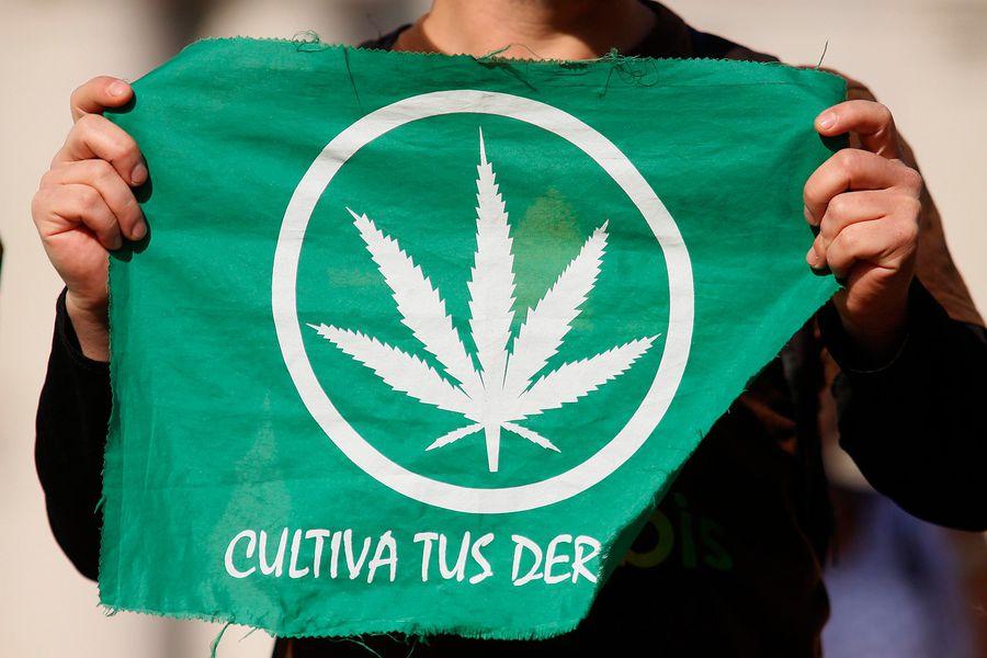 Marihuana Cultivo