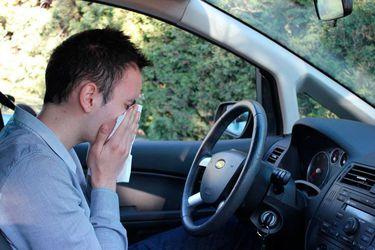 Inició la primavera y estos son los tips para mantener los alérgenos fuera de tu auto