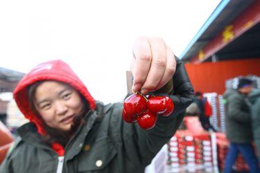 Exportadores de cerezas acusan situación crítica por freno en China