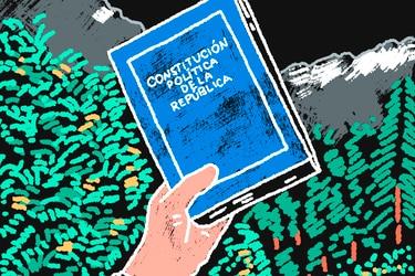 ¿Cómo proteger el medio ambiente en una nueva Constitución?