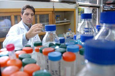"""Alexis Kalergis y la posibilidad de fabricar una vacuna en Chile: """"Podríamos ser parte del desarrollo de algunas vacunas internacionales"""""""