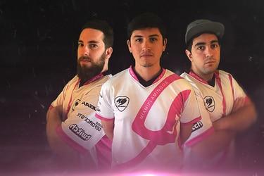 La vida de un jugador profesional contada por los Miami Flamingos