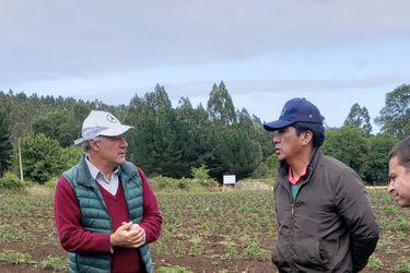Violencia, lluvias y baja en la demanda china: los factores que amenazan al agro, según Juan Sutil