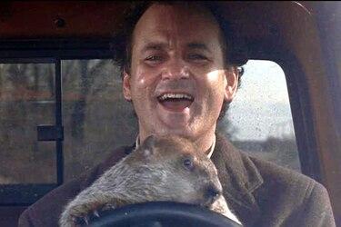 """Una serie basada en """"El Día de la Marmota"""" está en carpeta"""