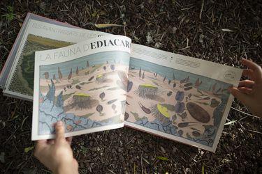 "Aina Bestard, autora de Paisajes perdidos de la Tierra: ""Con este libro aprendí a dibujar"""
