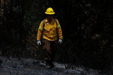 150 brigadistas de Conaf se declaran en huelga en La Araucanía por condiciones laborales