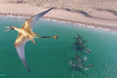"""El enigmático """"dragón volador prehistórico"""" que surcó los cielos chilenos del Jurásico: científicos descubren el pterosaurio más antiguo que habitó el país"""
