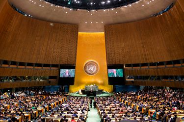 Asamblea General de la ONU