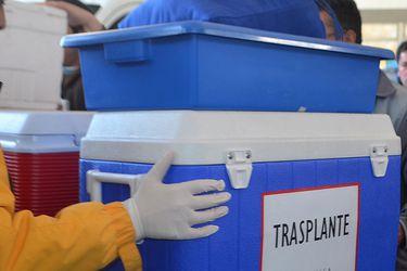 Otro efecto de la pandemia: de marzo a la fecha número de donantes y trasplantes ha caído más de la mitad en comparación al año pasado
