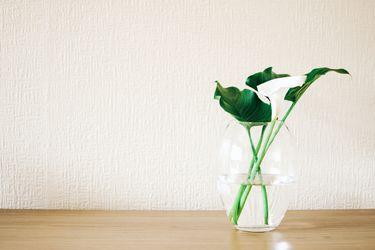 ¿Qué hacer para que las flores duren más tiempo?