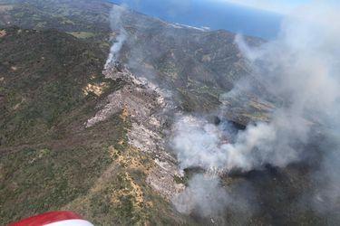 Alerta Roja en Zapallar y Papudo por incendio forestal: 90 hectáreas afectadas de matorral, pastizal y arbolado nativo