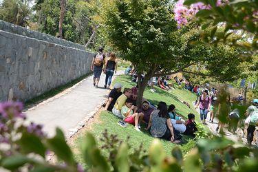 Mal uso de Jardín Japonés obliga a poner señalética en el lugar para educar a los visitantes
