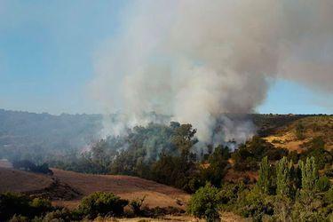 incendio forestal valle hermoso