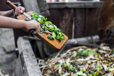 Guía de compostaje para principiantes