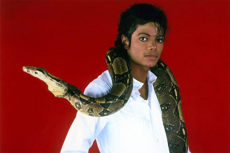 Michael Jackson Crusher Thriller