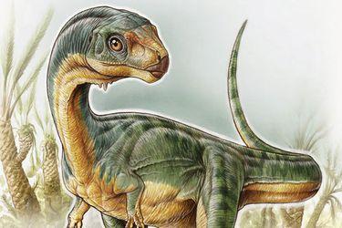¿Cómo era el chilesaurio, el dinosaurio más extraño del mundo descubierto en Chile? Este cuento te lo explicará...