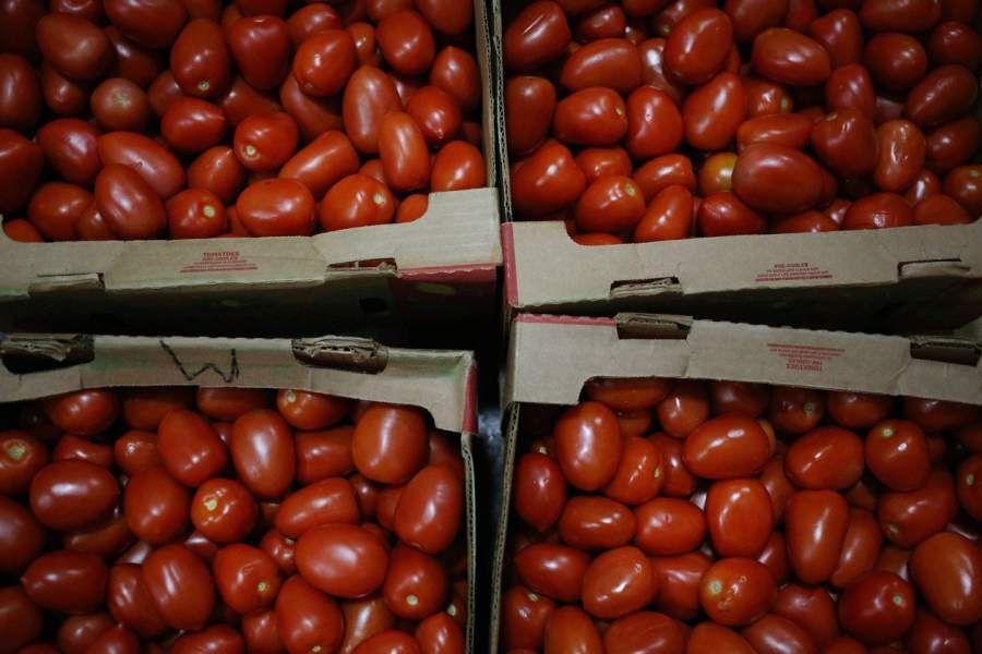 tomates wsj